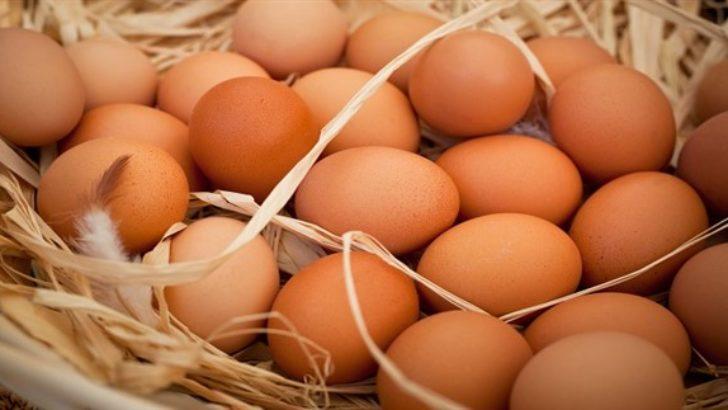 Bayat Yumurta Nasıl Anlaşılır ?